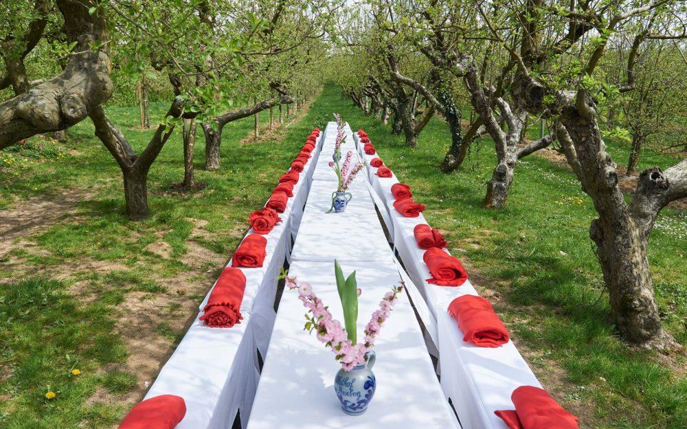 Hochzeitslocation für eine Boho Hochzeit Obsthof am Steinberg